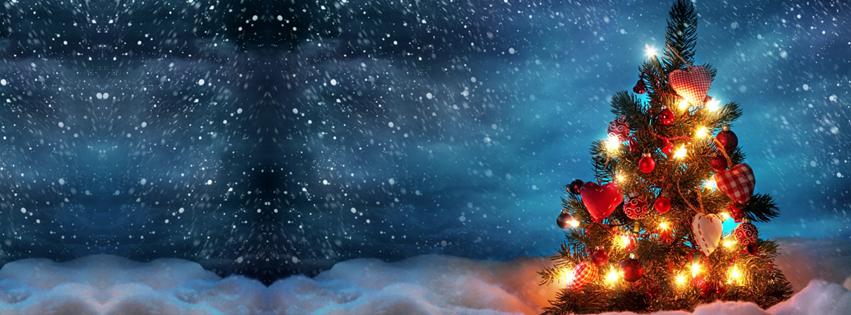 beautiful_christmas_tree-2